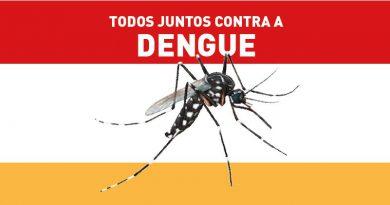 Dengue: 21 casos confirmados e neste sábado, 15, tem Mutirão no Vale Redentor I