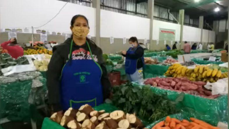 Feira do Produtor: Décadas de cooperação entre agricultores e consumidores