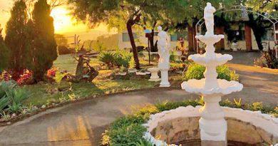 Pacientes transformam espaço desativado do Conderg em jardim terapêutico