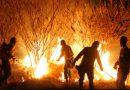 Bombeiro voluntário ferido em combate ao fogo em Águas da Prata tem ajuda no tratamento
